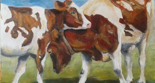 barbara gelcich 2 koeien in de wei lookatie364 kunstpost den haag